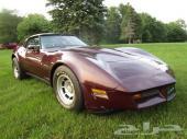 للبيع كورفيت 1982 اعلان رقم 798