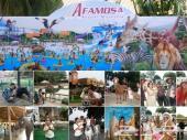 برنامج سياحي بماليزيا لمدة 8 ايام زوجين وطفل