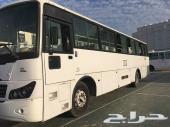 باص للايجار 30 راكب وتأجير جميع أنواع الباصات