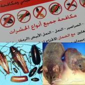 شركة مكافحة حشرات رش مبيدات شركة رش مبيدات
