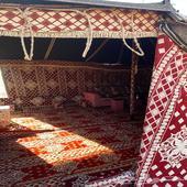 مخيم تبوك للايجار