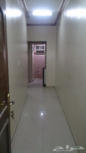 شقة عزاب للايجار الشهري