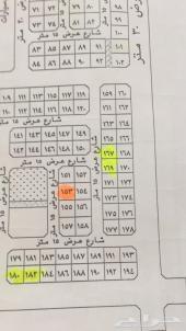 ارضين بالقيصومه مخطط بن رشدان
