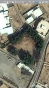أرض للبيع بجعرانة ... مكة المكرمة