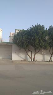 فيلا للبيع في حي المعيزلة في الرياض