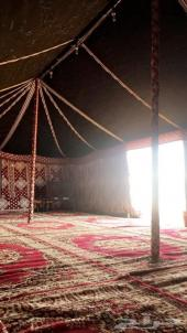 مخيم متكامل في أبها