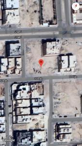 ارضين سكنية متجاورة حي الملقا