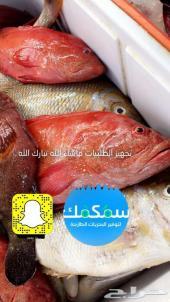 الجمعة اسماك طازجة من البحر الى الرياض
