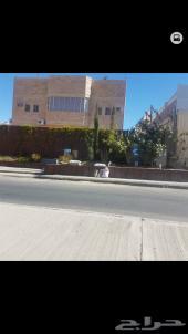 عمارة للاستثمار على شارع تجاري 60 متر