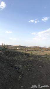 ارض زراعية بصك للإيجار