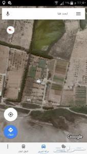 مزرعة
