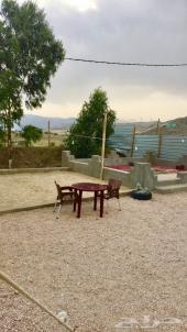 مخيم للايجار اليومي بأبها