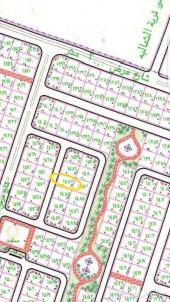 القنفذه ارض للبيع مخطط الشاطي 1