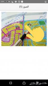 للبيع ارض بمخطط 209 شارع 40 فرصه