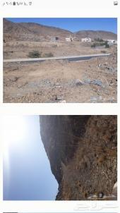 ارض قريبه من ابها بقرية شوحط