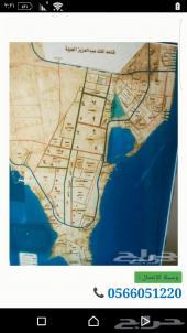 لبيع ارض بحي البحيرة 620 م بسعر 410 الف