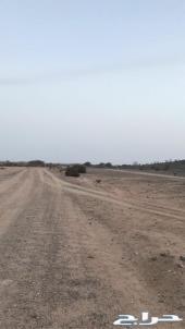 ارض ركنية للبيع