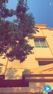شقة عوائل للايجار الجبيل البلد