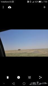75 فدان ارض زراعية للإيجار او المشاركة بمصر