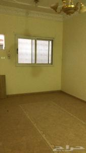 شقة للأيجار الدخل 2 تبوك