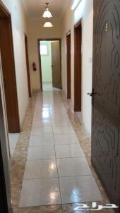 شقة5غرف جديدة1583شهرياالطايف القمريةالجوازات
