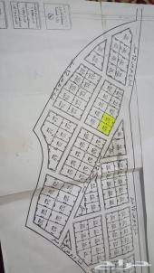 ارض ذوي حجي مساحة 1200م2