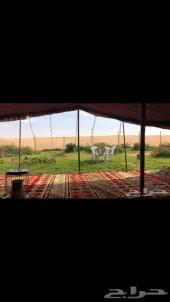 مخيم روضة خريم