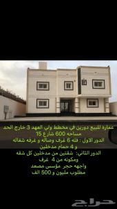 عماره للليع ولي العهد3