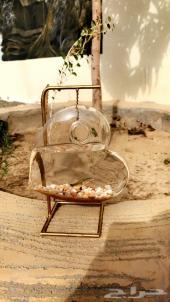 احواض سمك أشكال غريبه من خارج السعوديه
