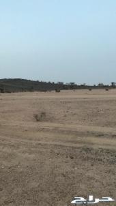 ارض للبيع في العرفا ركنية