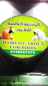 أجمل الطيور والحيوانات الاليفة ومستلزماتها