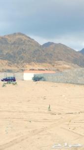 ارض جدا مميزه للبيع بوثيقه في الراشديه2