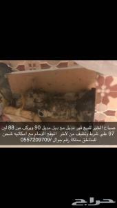 قير باترول مع دبل حقه من 88 لين 97