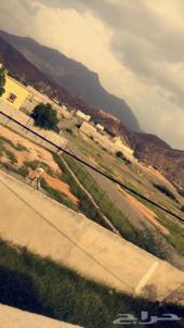 أرض سكنية مع مزرعة للبيع