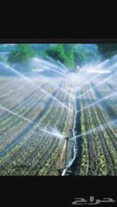 اذا لديك مزرعه او اشجار يهتم بها مهندس زراعي