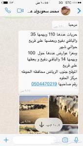 عنم مقاني حريات ومعزا التوصل عن طريق الجوال