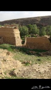 للبيع مزرعة في محافظة شقراء