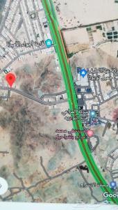 أرض في زهرة العمرة مساحة 877م