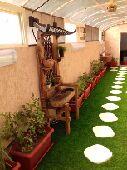 فن وتصميم الحدائق والديكورات الزراعية
