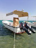 قارب نزهه للبيع