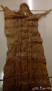 جلد ثعبان روك بايثون ( أصَلة الصخور ) للبيع