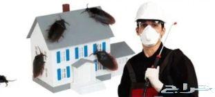 رش مبيدات ومكافحة حشرات رش دفان الرياض