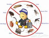 رش مبيدات مكافحة حشرات تنظيف شقق فلل خزانات