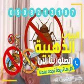 شركة مكافحة الحشرات بالمدينة المنورة بالضمان