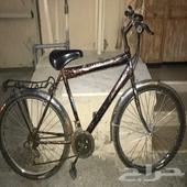 للبيع دراجة هؤائيه مقاس 24