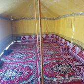 تجهيز مخيمات بيوت شعر خيام دورات مياه غرف خشب