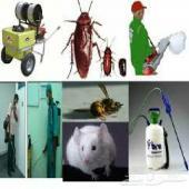 تسليك مجارى بالضغط ورش مبيد لجميع للحشرات