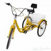 دراجة بثلاث عجلات كبيرة