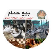 حمام للبيع في الرياض