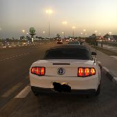 موستنق كشف  Mustang 2012